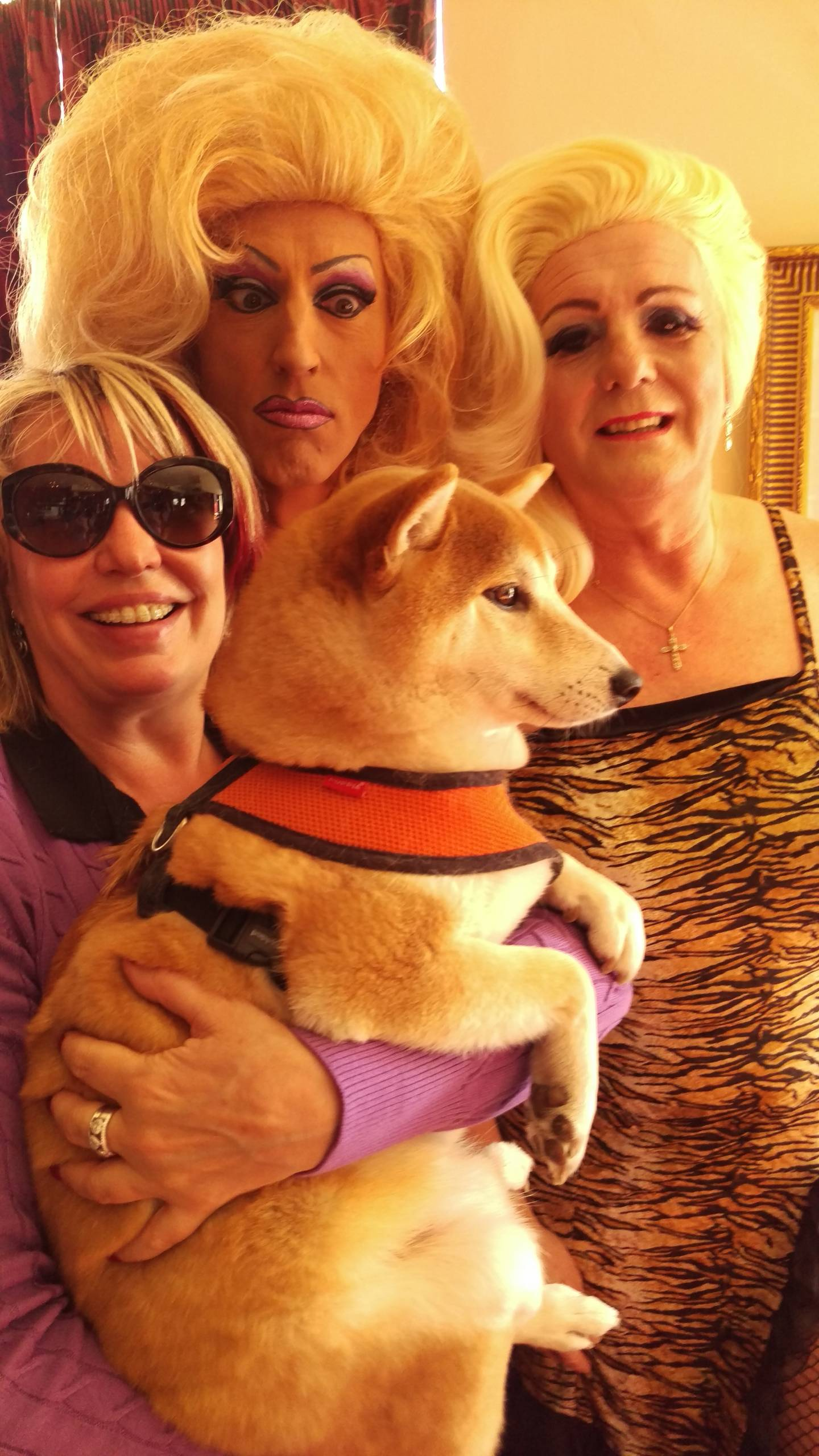 Fonda and Kitty with a fan and her dog